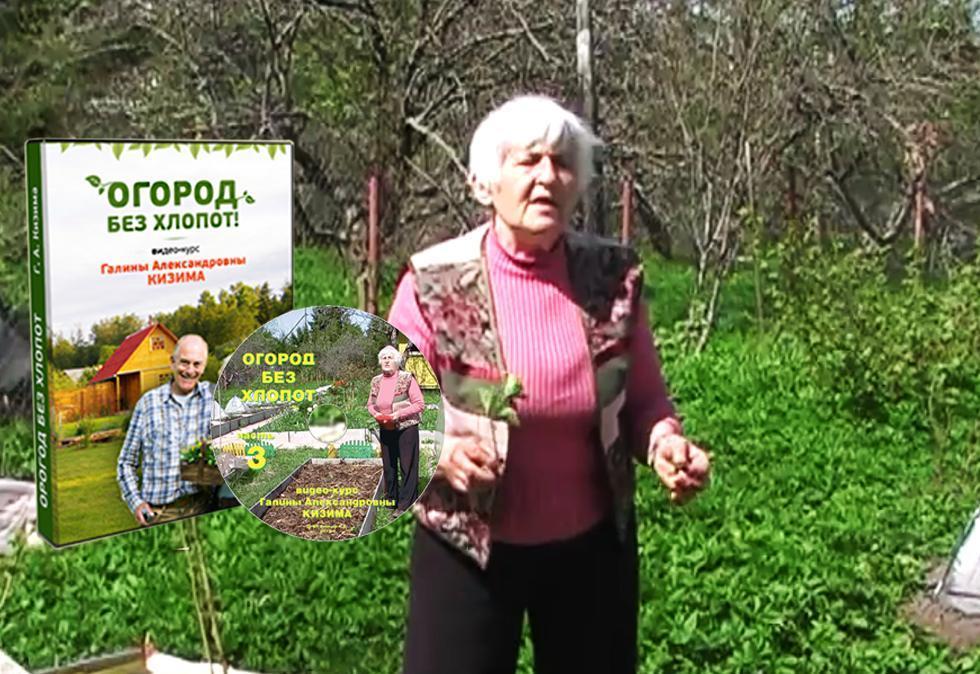 Галина кизима выращивание цветов 15