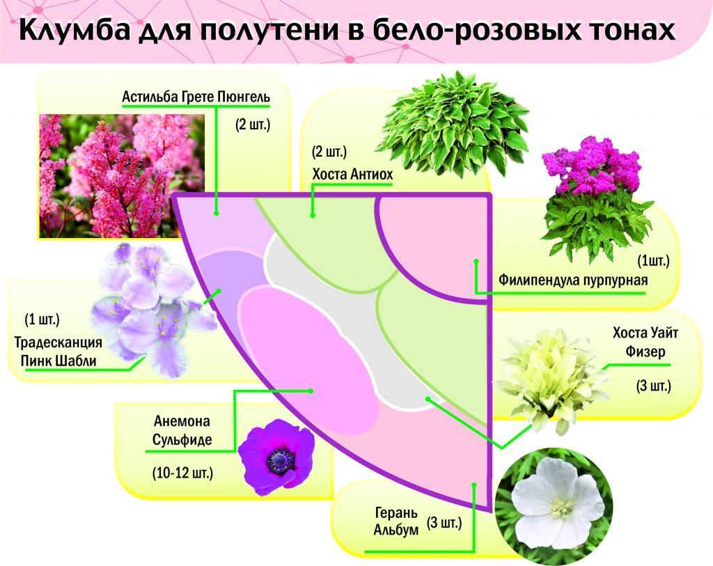 Схема с описание цветников