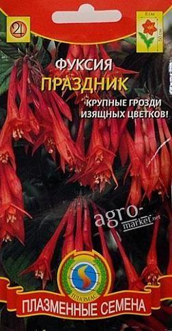 adc813e524605 Фуксия